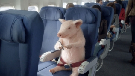 When pigs fly!  Get it?  Cause it is funny.