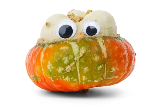 Fall food is so angry and bitter.