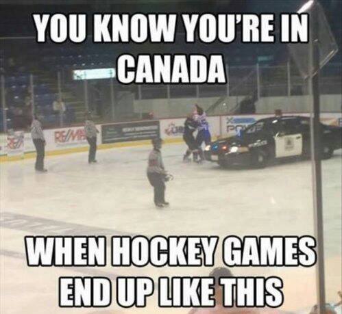 Just another night on the hockey rink...