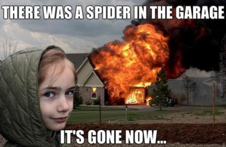 burn-the-house-down-to-kill-the-spider